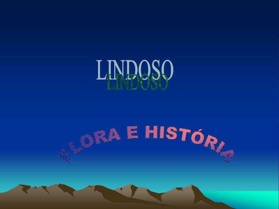 LINDOSO FLORA E HISTÓRIA