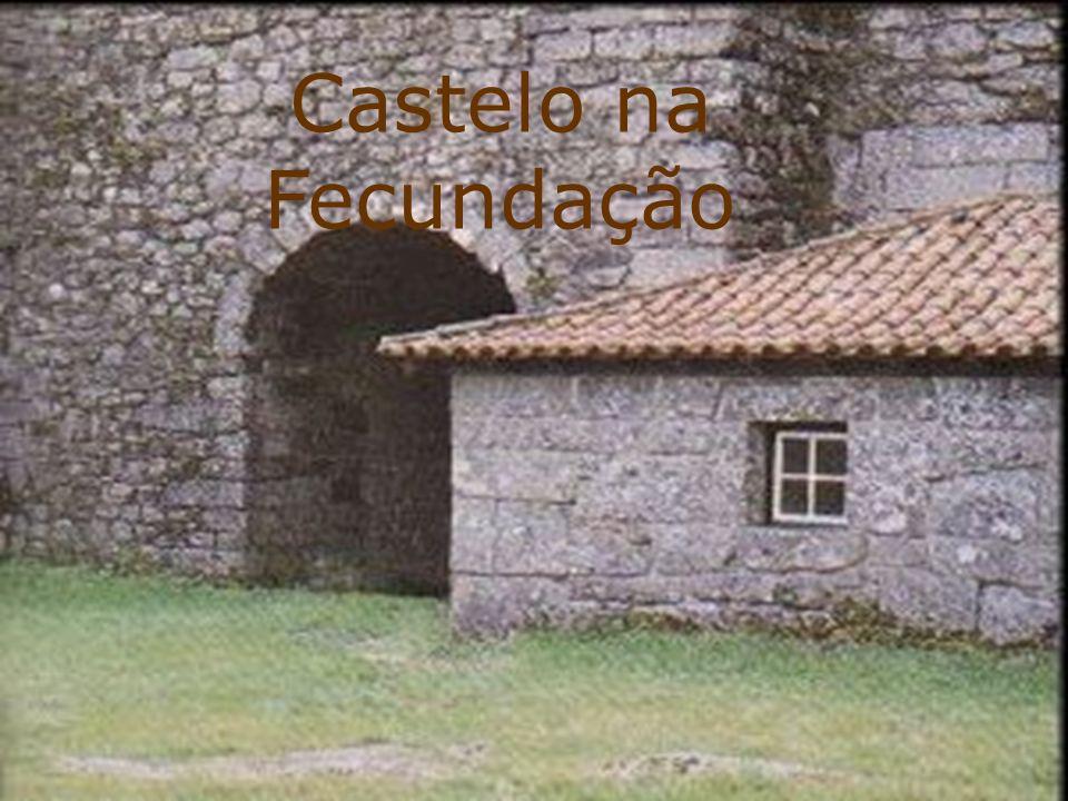 Castelo na fecundação: