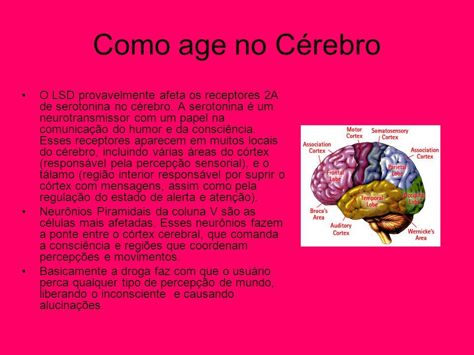 Como age no Cérebro