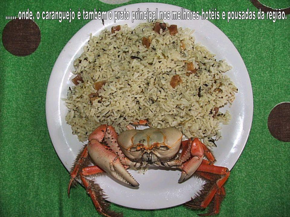 ...... onde, o caranguejo é também o prato principal nos melhores hotéis e pousadas da região.