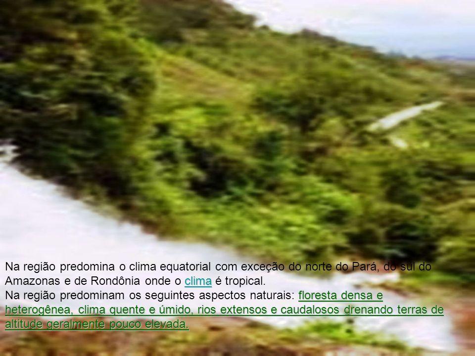 Na região predomina o clima equatorial com exceção do norte do Pará, do sul do Amazonas e de Rondônia onde o clima é tropical.
