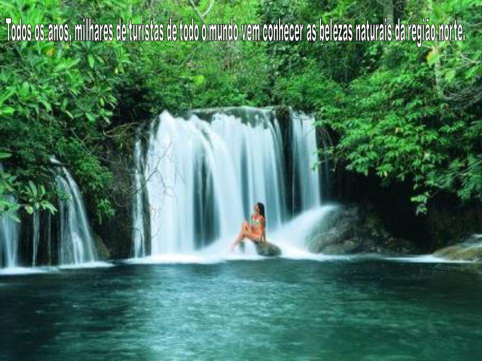 Todos os anos, milhares de turístas de todo o mundo vem conhecer as belezas naturais da região norte.