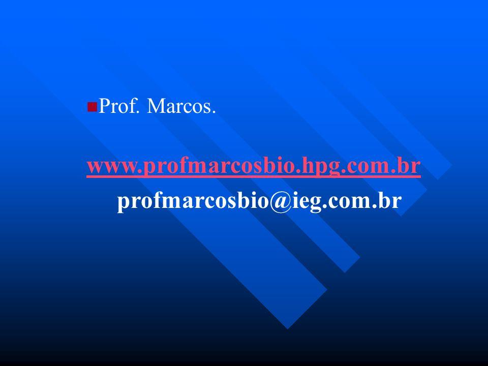 Prof. Marcos. www.profmarcosbio.hpg.com.br profmarcosbio@ieg.com.br
