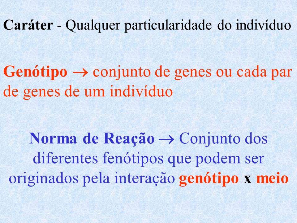 Genótipo  conjunto de genes ou cada par de genes de um indivíduo
