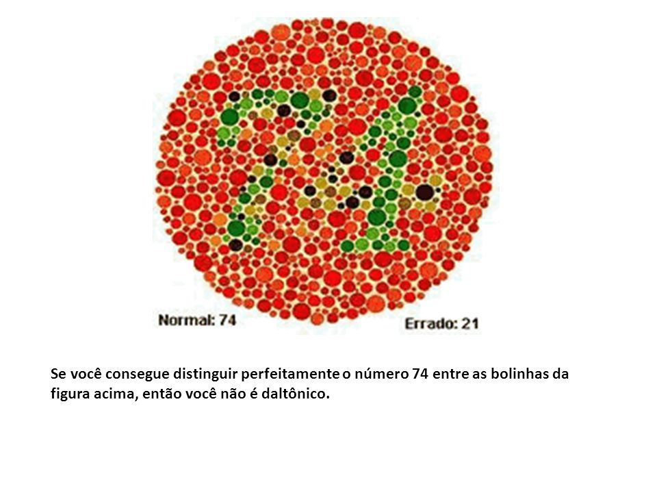 Se você consegue distinguir perfeitamente o número 74 entre as bolinhas da figura acima, então você não é daltônico.