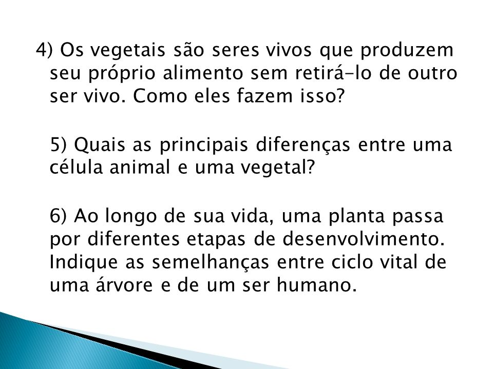 4) Os vegetais são seres vivos que produzem seu próprio alimento sem retirá-lo de outro ser vivo.