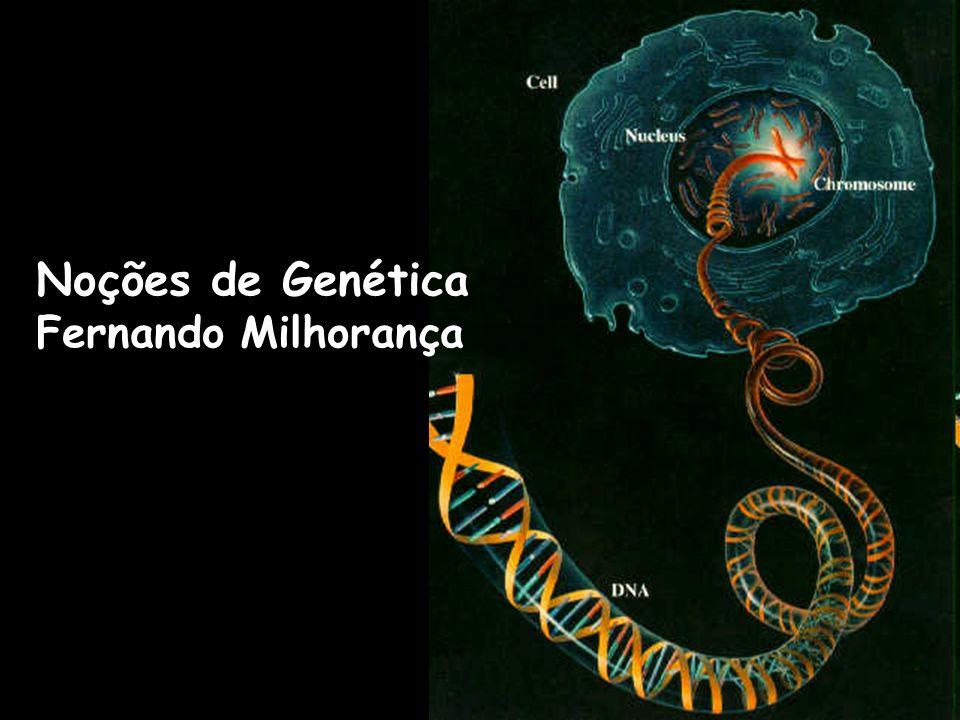 Noções de Genética Fernando Milhorança