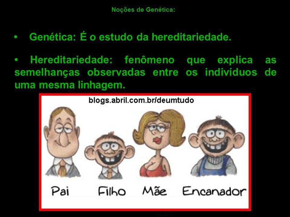 • Genética: É o estudo da hereditariedade.