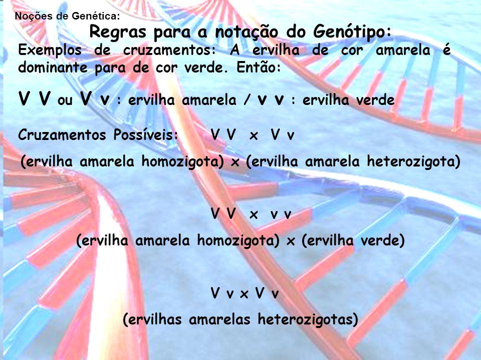 V V ou V v : ervilha amarela / v v : ervilha verde