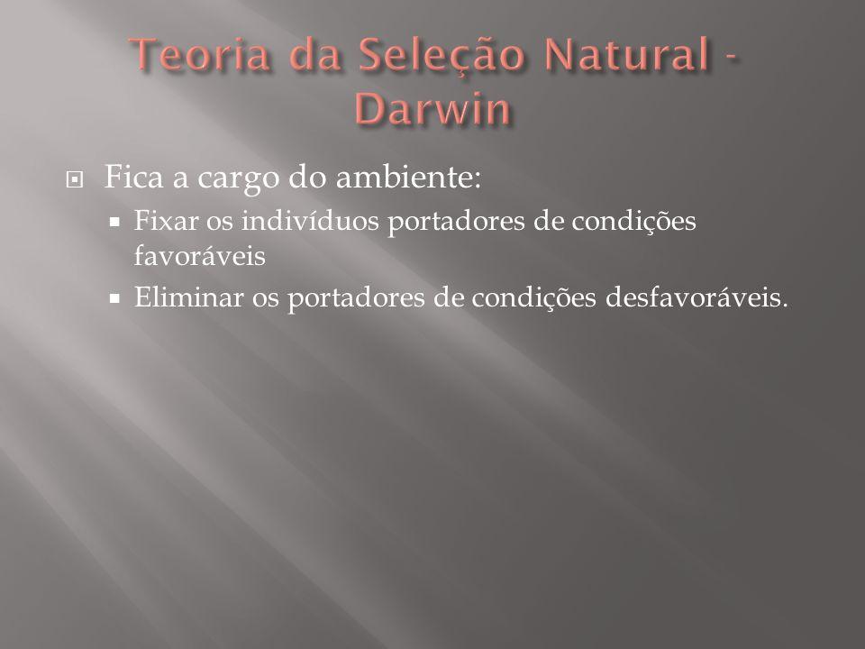 Teoria da Seleção Natural - Darwin