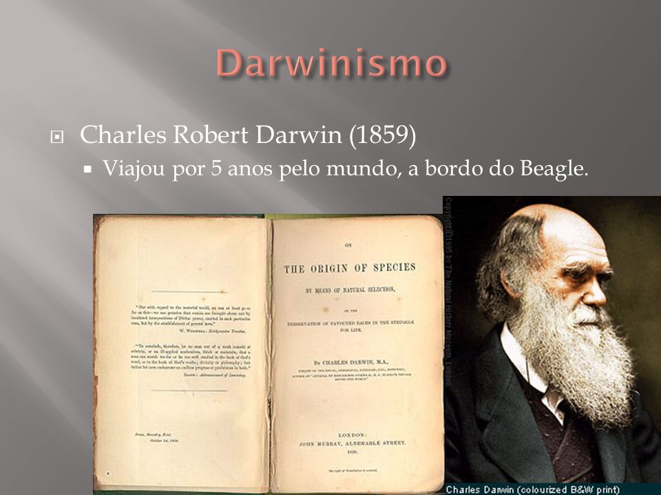 Darwinismo Charles Robert Darwin (1859)