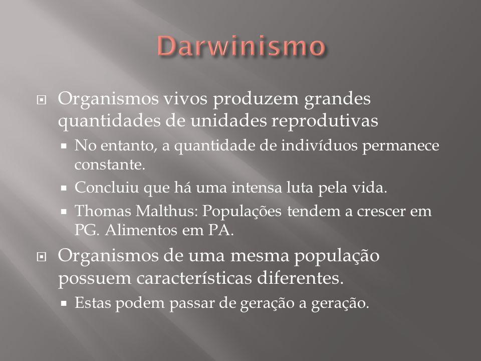 Darwinismo Organismos vivos produzem grandes quantidades de unidades reprodutivas. No entanto, a quantidade de indivíduos permanece constante.
