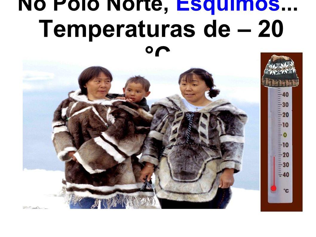 No Polo Norte, Esquimós... Temperaturas de – 20 °C