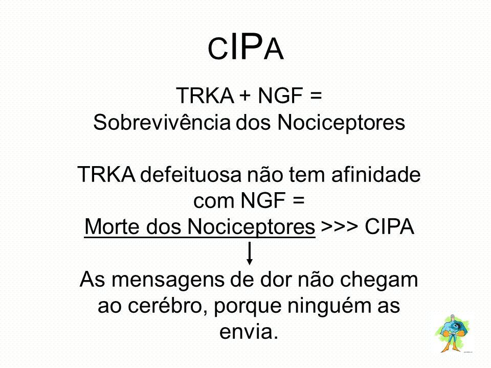 CIPA TRKA + NGF = Sobrevivência dos Nociceptores
