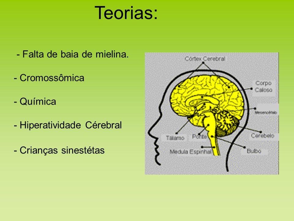 Teorias: - Falta de baia de mielina. - Cromossômica - Química