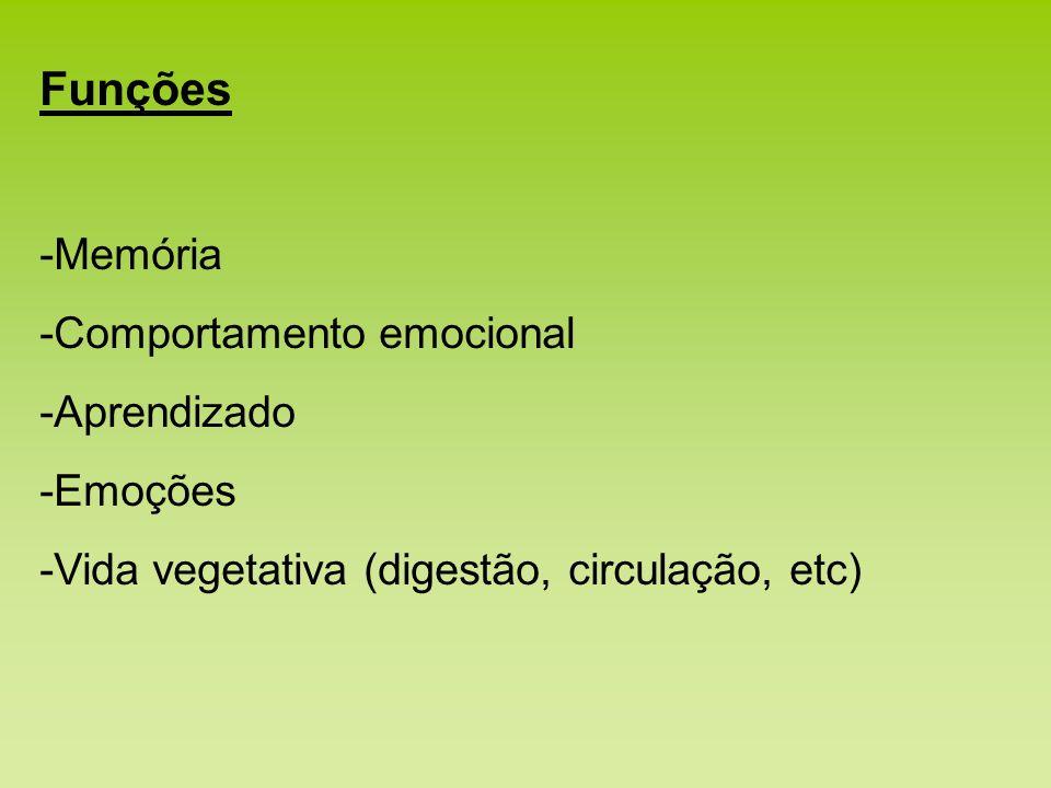 Funções -Memória Comportamento emocional Aprendizado Emoções