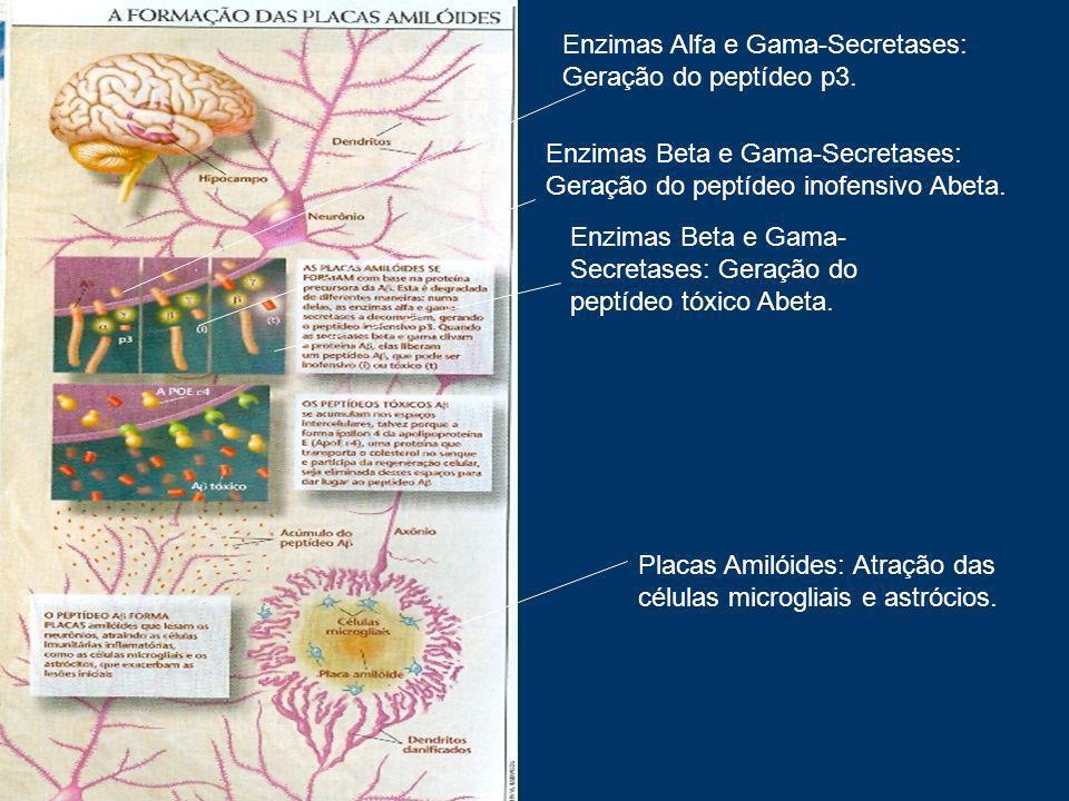 Enzimas Alfa e Gama-Secretases: Geração do peptídeo p3.