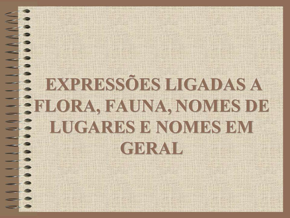 EXPRESSÕES LIGADAS A FLORA, FAUNA, NOMES DE LUGARES E NOMES EM GERAL