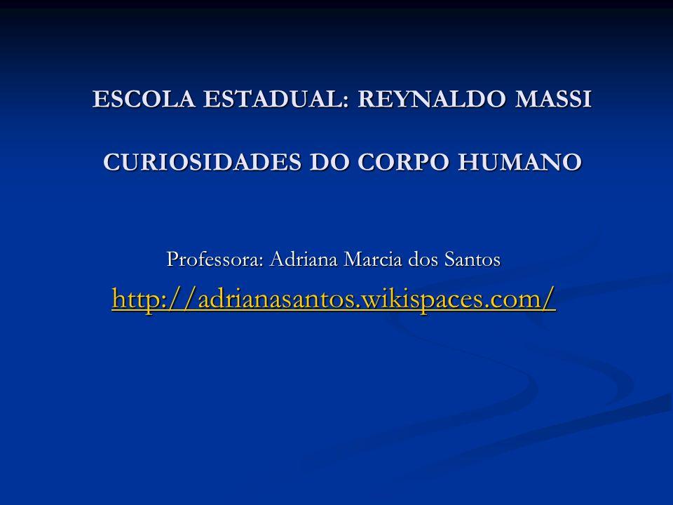 ESCOLA ESTADUAL: REYNALDO MASSI CURIOSIDADES DO CORPO HUMANO