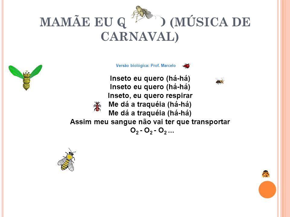 MAMÃE EU QUERO (MÚSICA DE CARNAVAL)