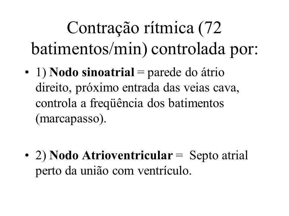 Contração rítmica (72 batimentos/min) controlada por:
