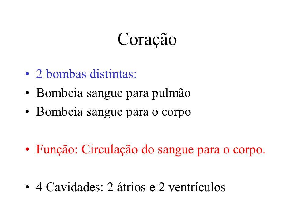 Coração 2 bombas distintas: Bombeia sangue para pulmão
