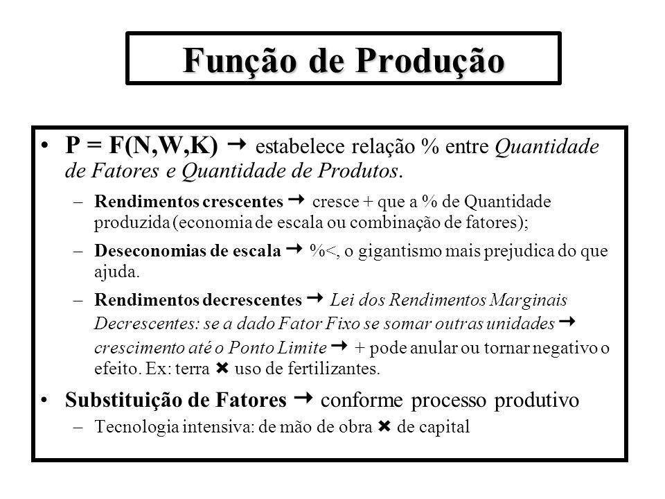 Função de Produção P = F(N,W,K)  estabelece relação % entre Quantidade de Fatores e Quantidade de Produtos.