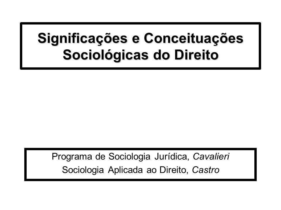 Significações e Conceituações Sociológicas do Direito