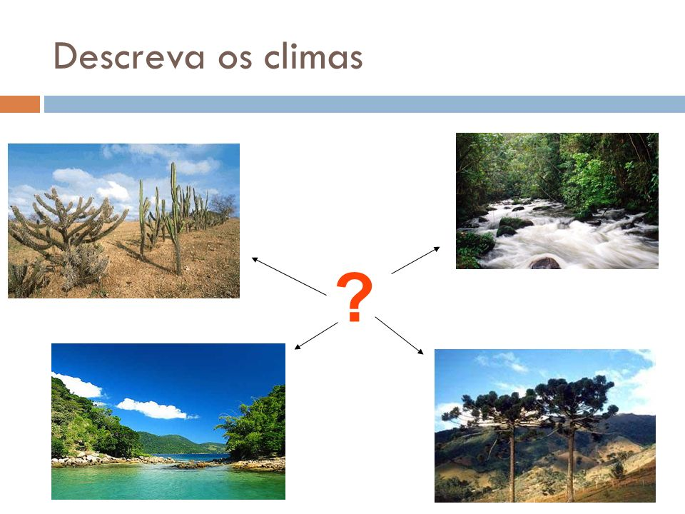 Descreva os climas