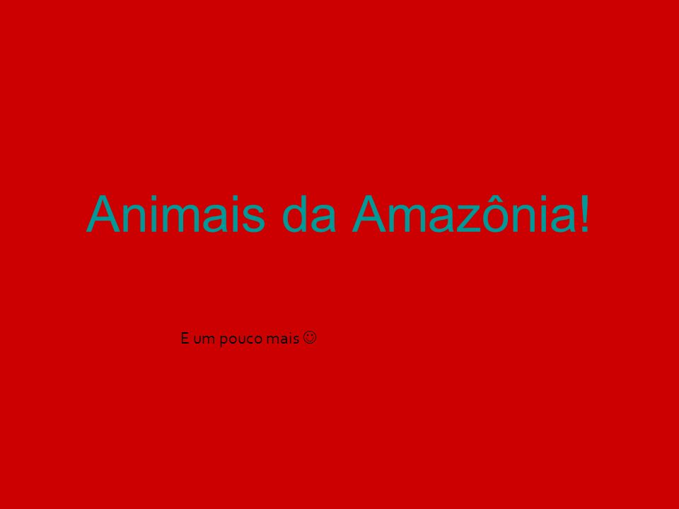 Animais da Amazônia! E um pouco mais 