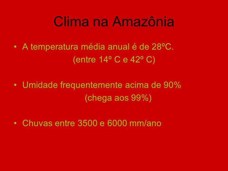 Clima na Amazônia A temperatura média anual é de 28ºC.