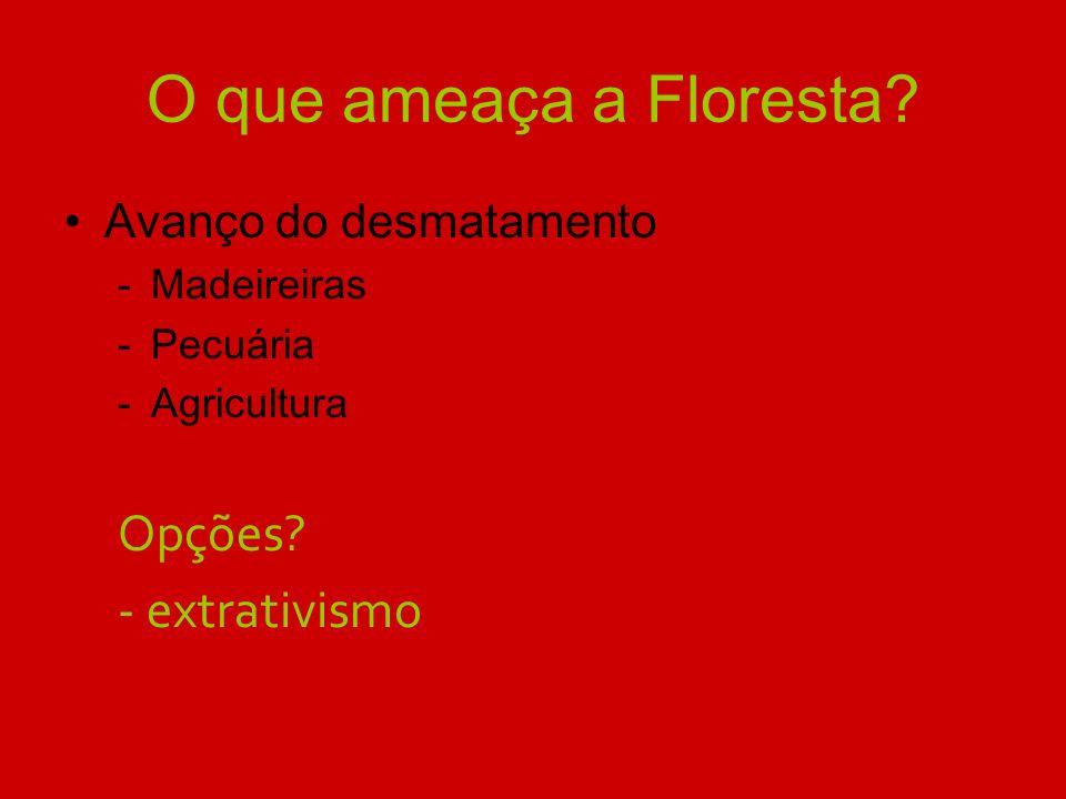 O que ameaça a Floresta Opções - extrativismo Avanço do desmatamento