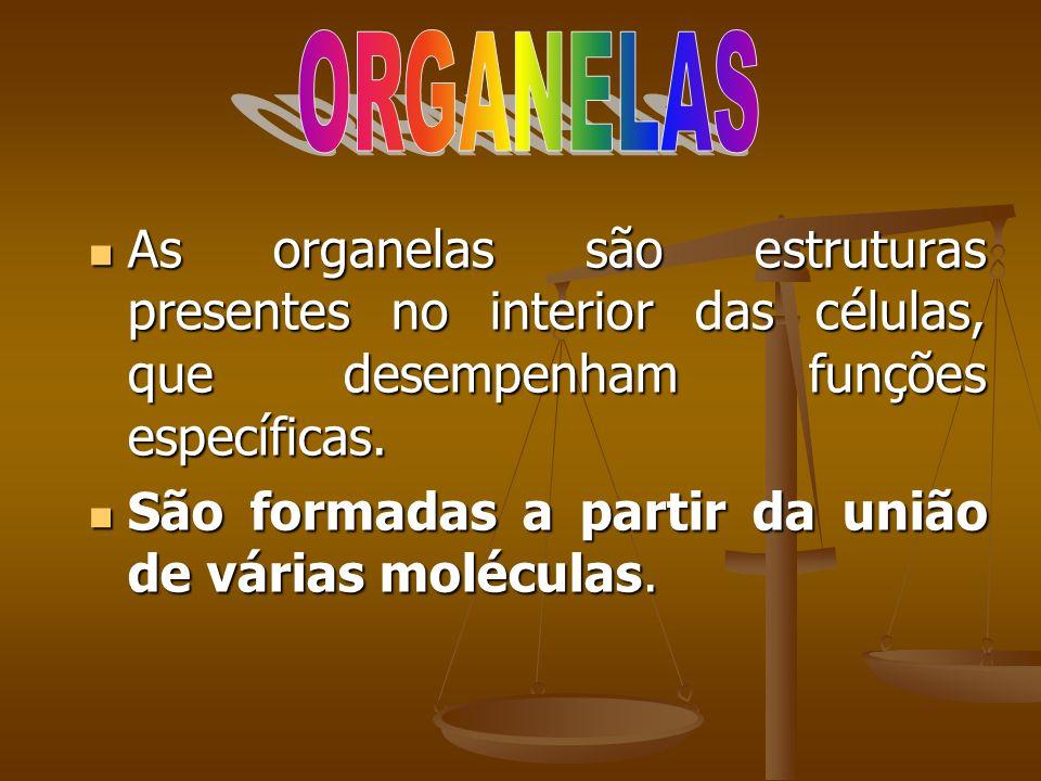 ORGANELAS As organelas são estruturas presentes no interior das células, que desempenham funções específicas.