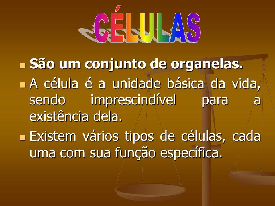 CÉLULAS São um conjunto de organelas. A célula é a unidade básica da vida, sendo imprescindível para a existência dela.