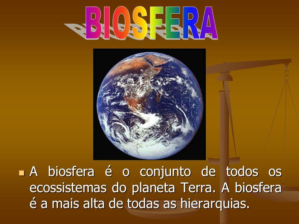 BIOSFERA A biosfera é o conjunto de todos os ecossistemas do planeta Terra.