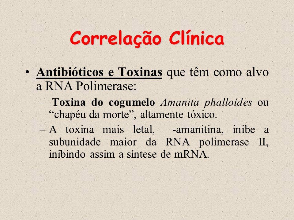 Correlação Clínica Antibióticos e Toxinas que têm como alvo a RNA Polimerase: