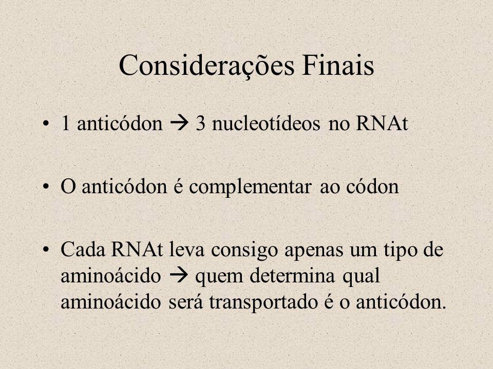 Considerações Finais 1 anticódon  3 nucleotídeos no RNAt