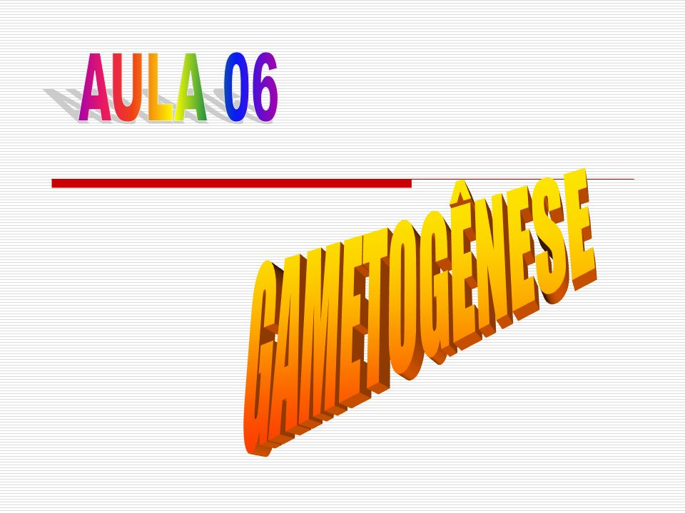 AULA 06 GAMETOGÊNESE