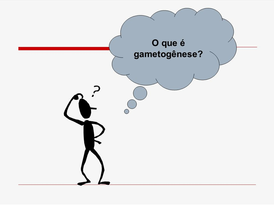 O que é gametogênese