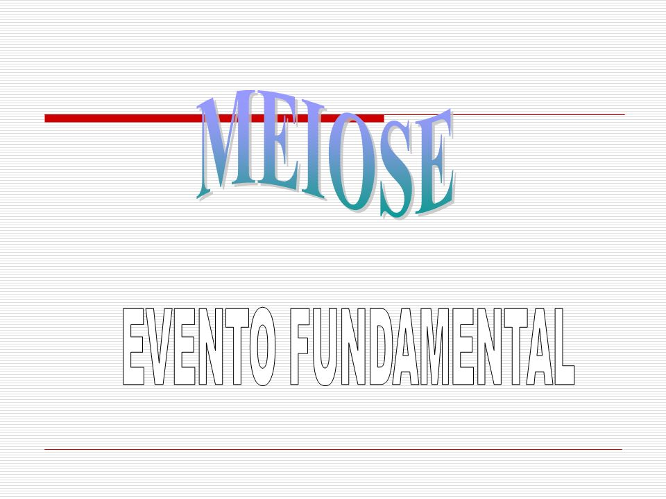 MEIOSE EVENTO FUNDAMENTAL