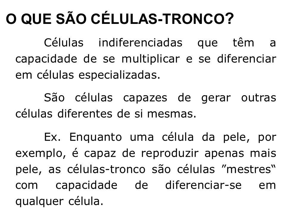 O QUE SÃO CÉLULAS-TRONCO