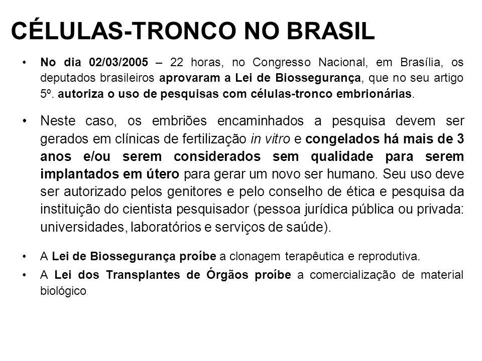 CÉLULAS-TRONCO NO BRASIL