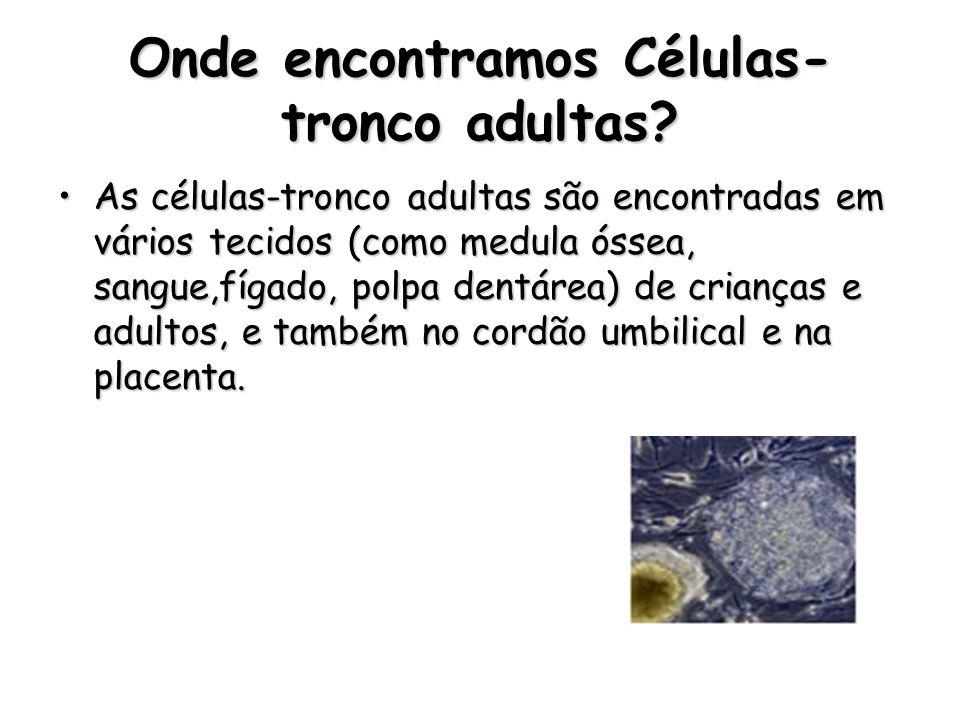 Onde encontramos Células-tronco adultas