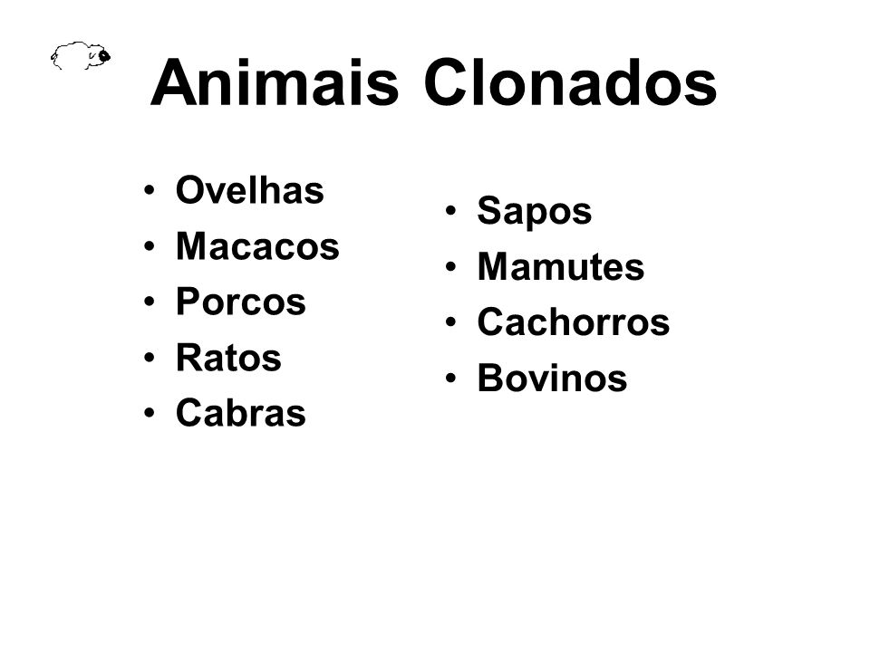 Animais Clonados Ovelhas Sapos Macacos Mamutes Porcos Cachorros Ratos