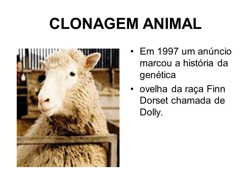CLONAGEM ANIMAL Em 1997 um anúncio marcou a história da genética