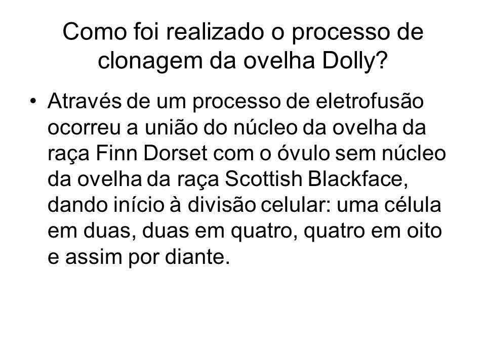 Como foi realizado o processo de clonagem da ovelha Dolly