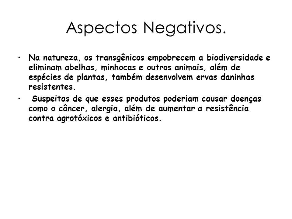 Aspectos Negativos.