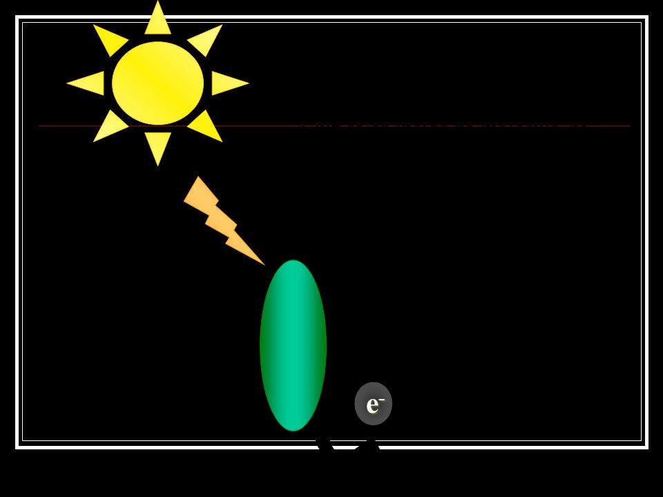 A luz solar incide na molécula de clorofila