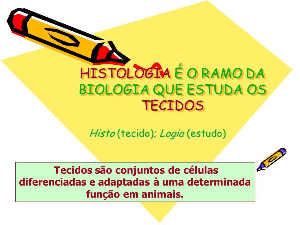HISTOLOGIA É O RAMO DA BIOLOGIA QUE ESTUDA OS TECIDOS