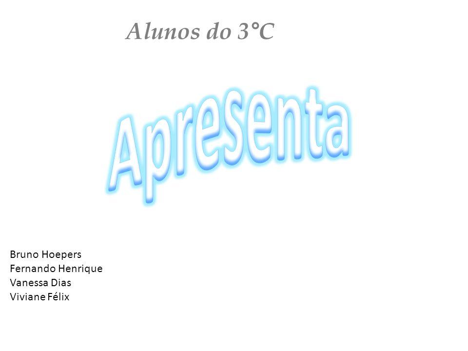 Alunos do 3°C Bruno Hoepers Fernando Henrique Vanessa Dias